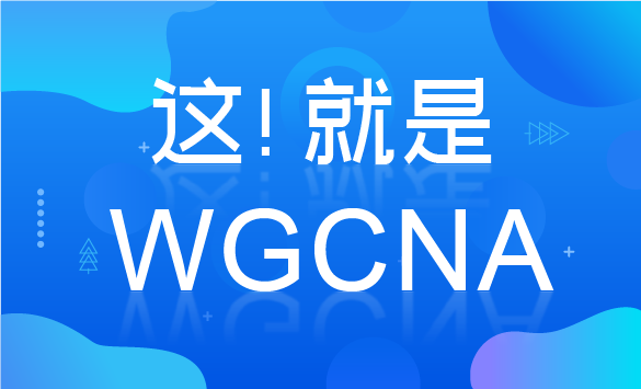这!就是WGCNA