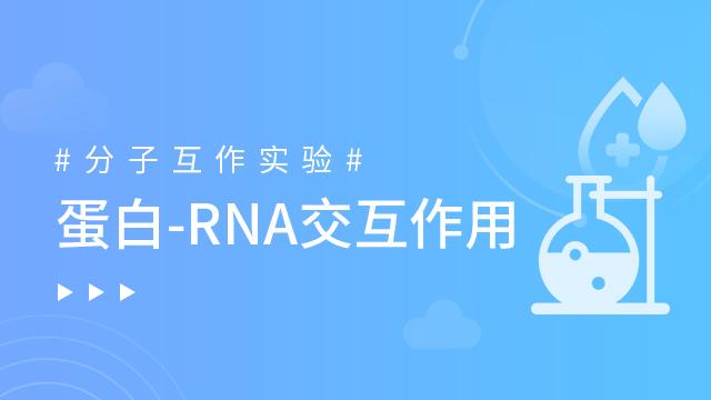 蛋白-RNA交互作用